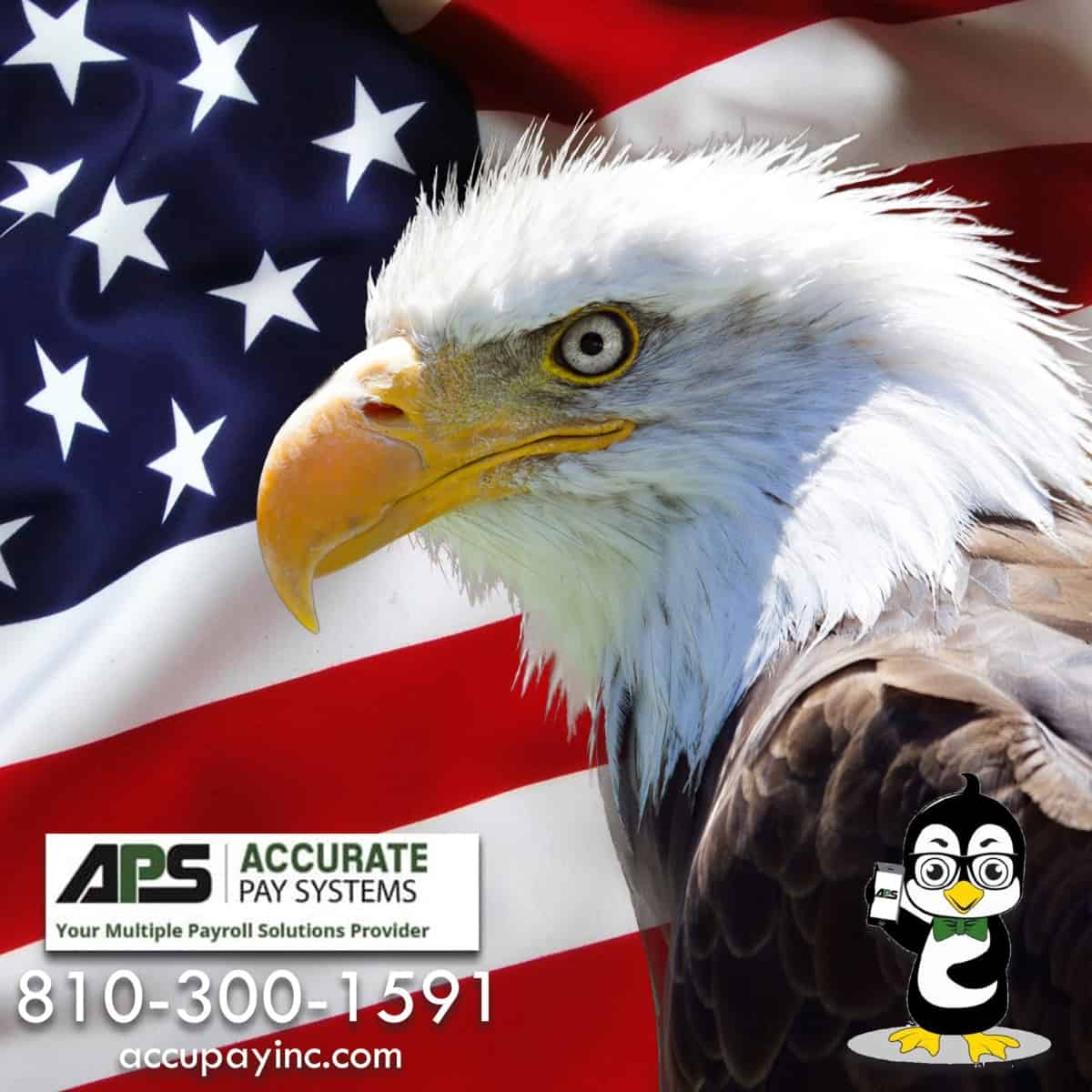 American Flag and Bald Eagle with Accurate Pay Systems Logos