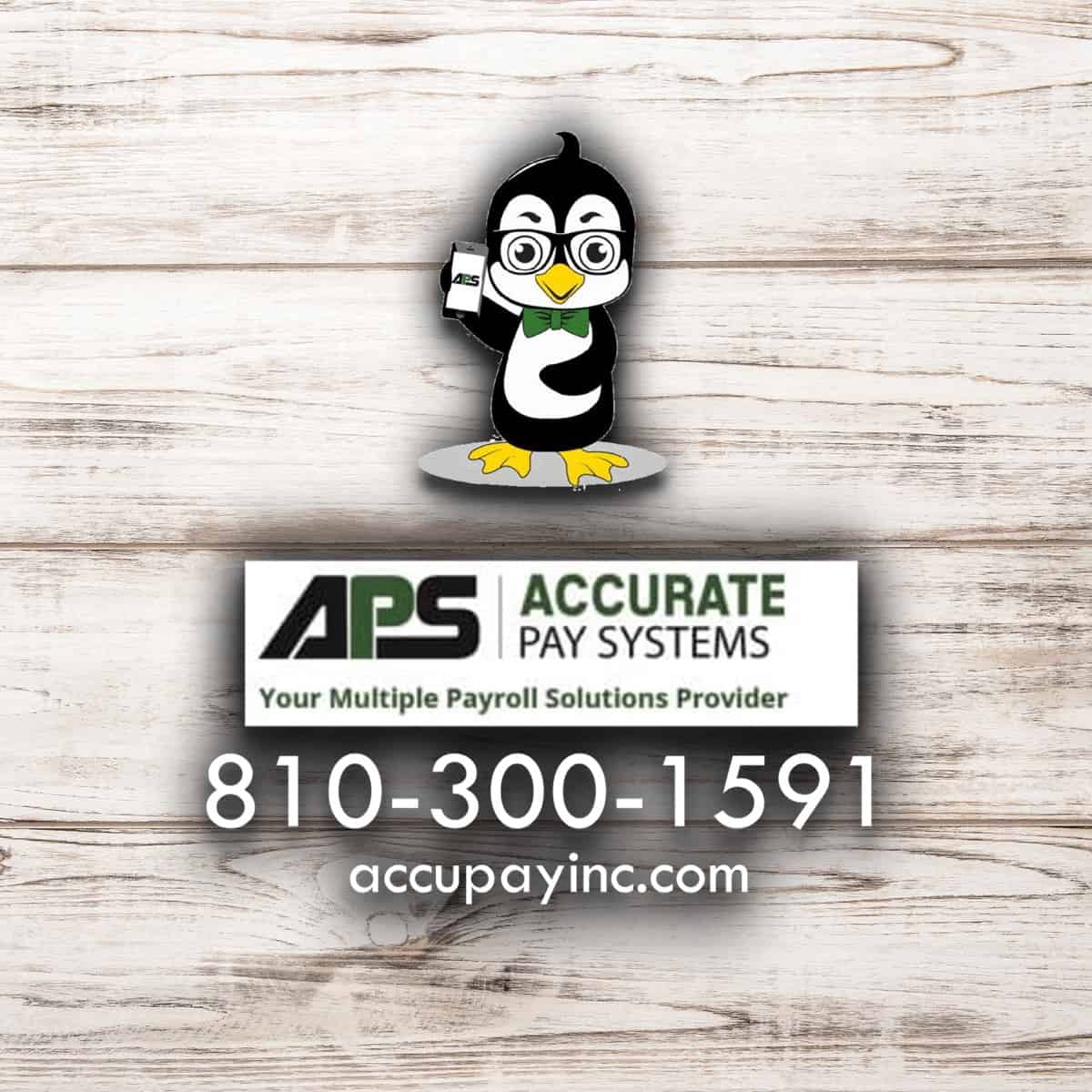 Accurate Pay Systems, Inc.